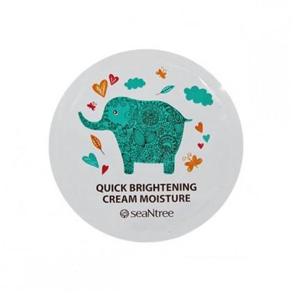 SeaNTree Quick Brightening Cream Moisture